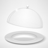 Food tray, restaurant cloche