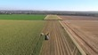 Aerial view of harvesting corn for silage