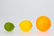 A Row of Orange Lemon and Lime Fruits