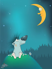 Hedgehog and the moon. Cartoon