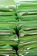 green stacks of office folders