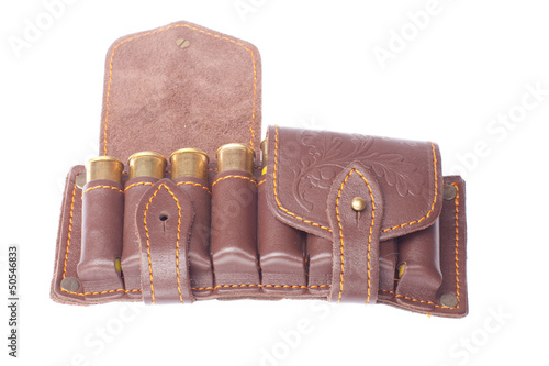 Brown potrontash with bullets on a white background