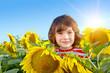 Sweet boy in field with sunflowers