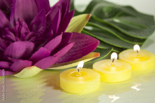 candles and water lily