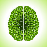 human brain, green thoughts