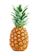 Pineapple - 50558878