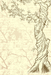 Sketch of the tree on grungy ornate paper