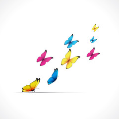 Papillons-envol