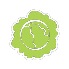 Cartoon Cabbage Sticker