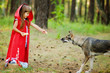 """the girl feeds a wolf. the fairy tale """" Red Riding Hood"""""""