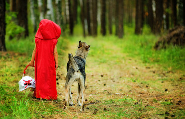 """girl with a wolf . the fairy tale """" Red Riding Hood"""""""