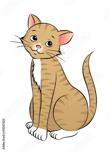 Fotobehang Katten treue Katze