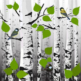 In the forest, the birds on the trees, vector