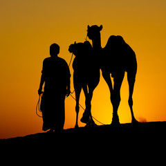 Silhouette of a man and two camels at sunset, India
