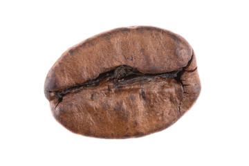 Kaffeebohne Detailaufnahme - freigestellt