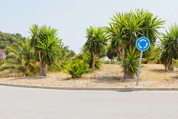 Kreisel mit Palmen