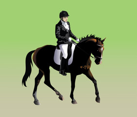 Vector drawing athletes participating rider in dressage