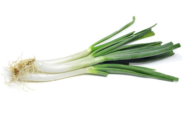 calcots, catalan sweet onions