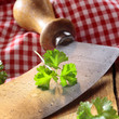 Close up of a modern herb cutter
