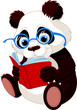 Cute Panda Education
