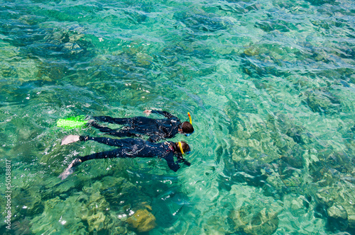 Snorkelers, Great Barrier Reef, Australia - 50588817