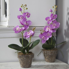 Potted pink artificial orchid on  table top in front of cupboard
