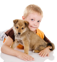 boy embraces puppy. isolated on white