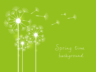 Green dandelions background