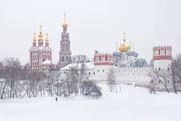 View of Novodevichy convent.