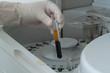 Woman loading samples in biochemical analyzer