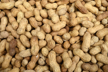 closeup peanuts background