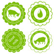 Organic farm dairy goats cheese, milk and meat food labels illus