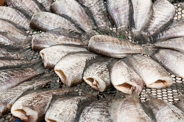 Dried fishs of local food in Thailand