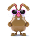 Chocolate bunny is cool in her pink shades
