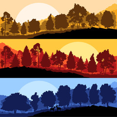 Wild mountain forest nature landscape scene collection backgroun
