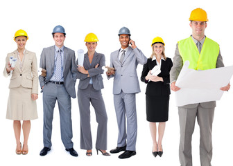 Team of architects in a row