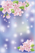 Spring sakura blossom banner, vector illustration