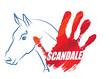 scandale de la viande de cheval