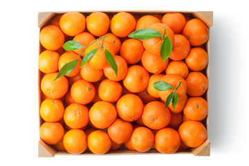 Crate of ripe tangerines. Top view.