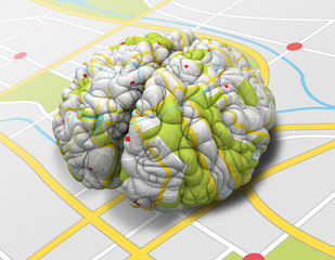 Mind Map Brain Perspective