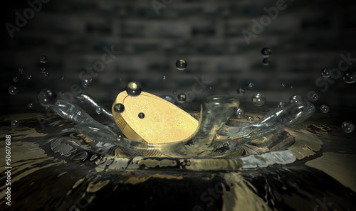 Coin Hitting Water Splash