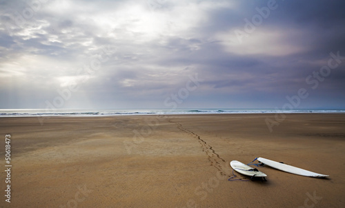 Surfboards! Surfing Landscape / Sea Scape - Beach Art,