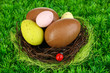 Composition of Easter and chocolate eggs in nest