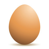 Realistic vector drawing of an egg.