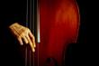 Leinwanddruck Bild - Vintage double bass