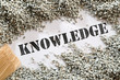 Knowledge -- Treasure Word Series