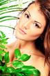 cosmetics bio