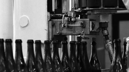Beverage production