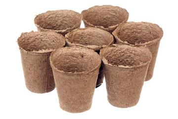 Seven peat pots