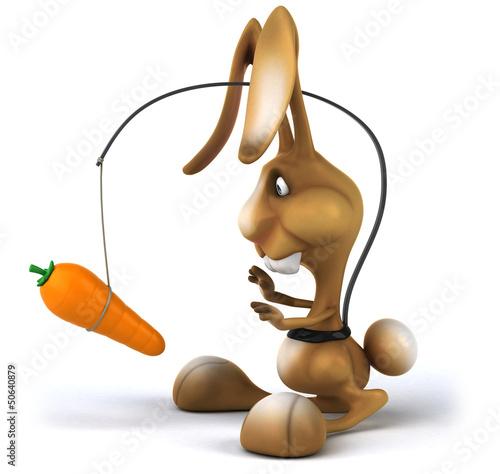 Fun rabbit